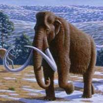 mammoth-pleistocene-mammals-painting-excerpt