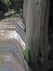 Sol Duc log bridge plastic wedge securing railing post