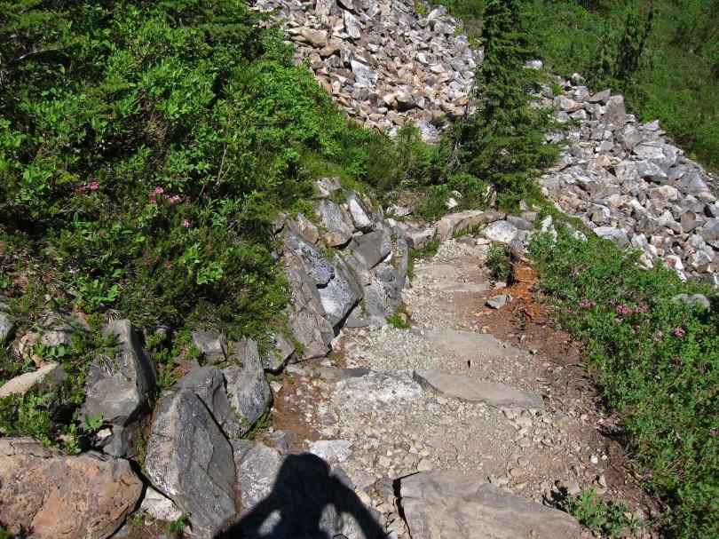 Stone retaining wall along the trail through Sol Duc Park