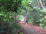 On the path across the island to the windward beach & lodges
