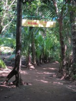Iguana lodge entry
