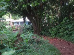 Side path to Casa Iguana lodge, near junction at Rosa's