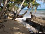 IMG_3770 beach erosion Iguana 1