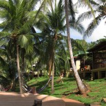 Upscale Yemaya lodge hosts yoga retreats.